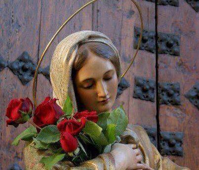 Maria trandafiri