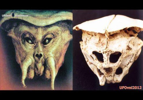 craniu Rodopi 1