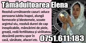 Banner 300x150 tamaduitoarea Elena 8