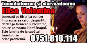 Banner 300x150 tamaduitoarea Elisa Valentina 6