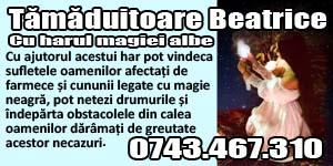 Banner 300x150 Tamaduitoarea Beatrice