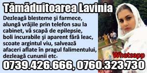 Banner 300x150 Tamaduitoarea Lavinia