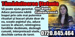 Banner 300x150 Tamaduitoarea Stefania